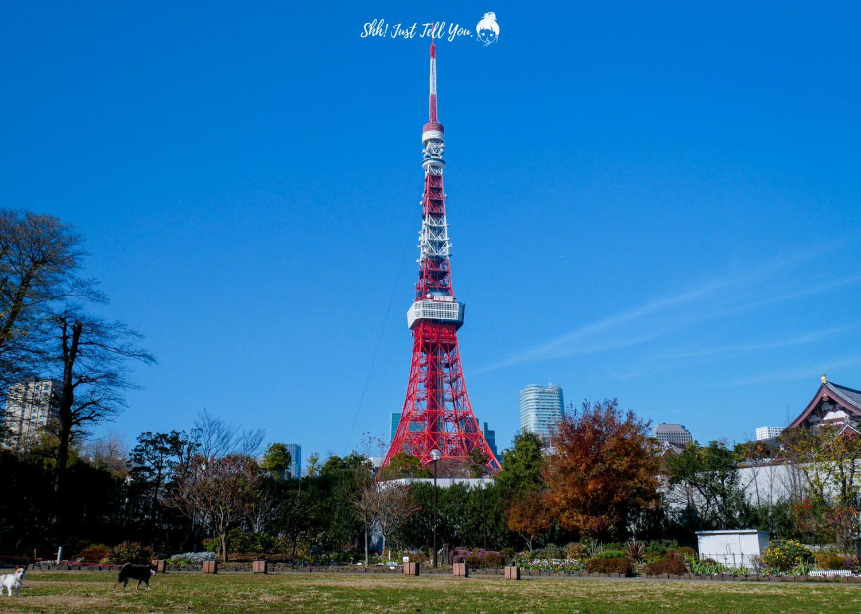 東京芝公園