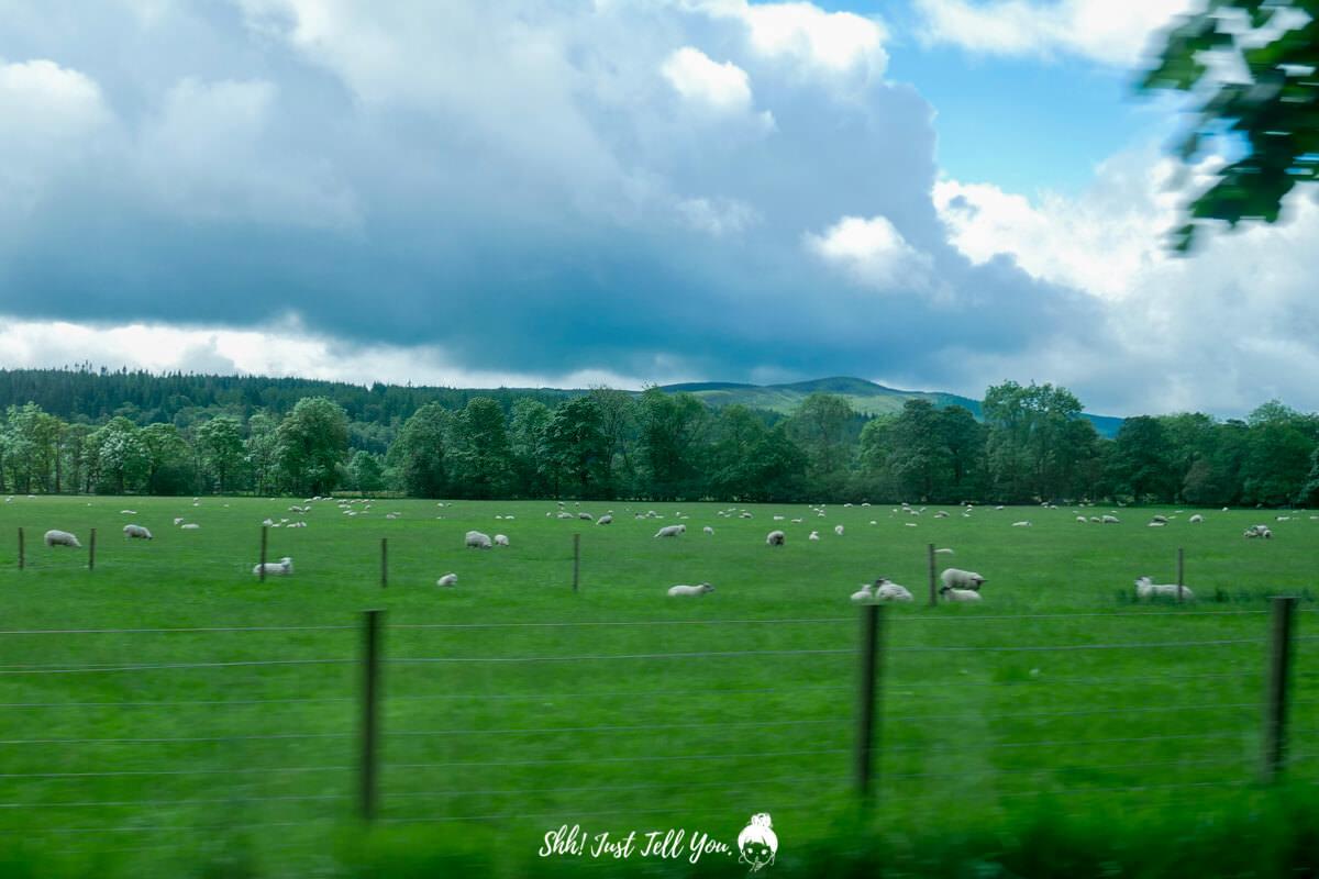 蘇格蘭高地scotland highland極光旅遊英國、蘇格蘭高地|一路向天空島(Skye Island)前進