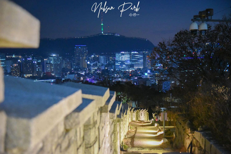 韓國首爾夜景駱山公園